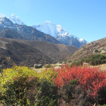 Vandra Everest Circuit