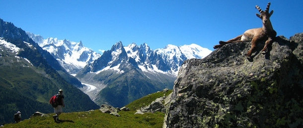 Vandra Tour du Mont Blanc med Adventure Lovers